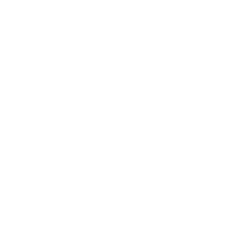 Cybersecurity icon