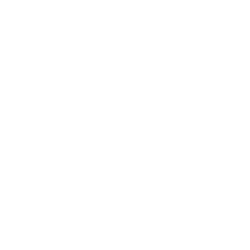 Game Porting icon